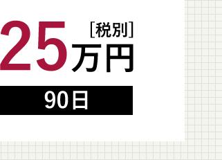 25万円[税別]90日
